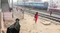 A day in the life of Mathura Junction: Starring, Hema Malini and a bull