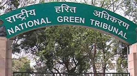 Felling of trees in Dwarka: NGT issues notice to Centre, Delhigovernment