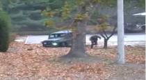Dramatic video shows escape, shooting of North Koreandefector