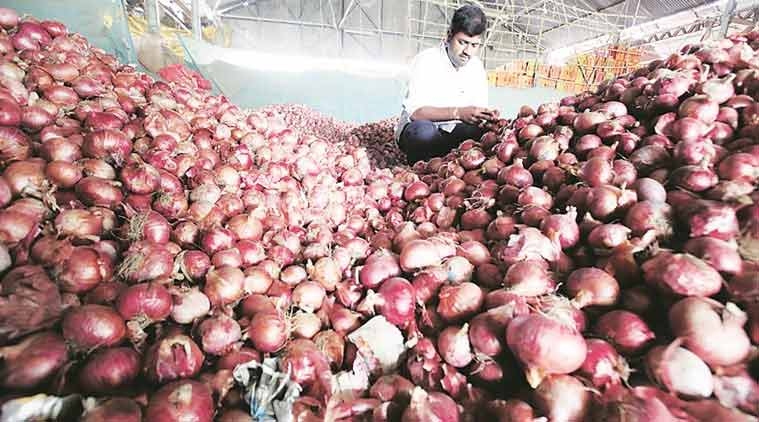 Maharashtra Onion farmers, Onion prices, Onion wholesale prices, Onion farmers, kharif crops, farmers storage facilities, onion storage facilities, indian express