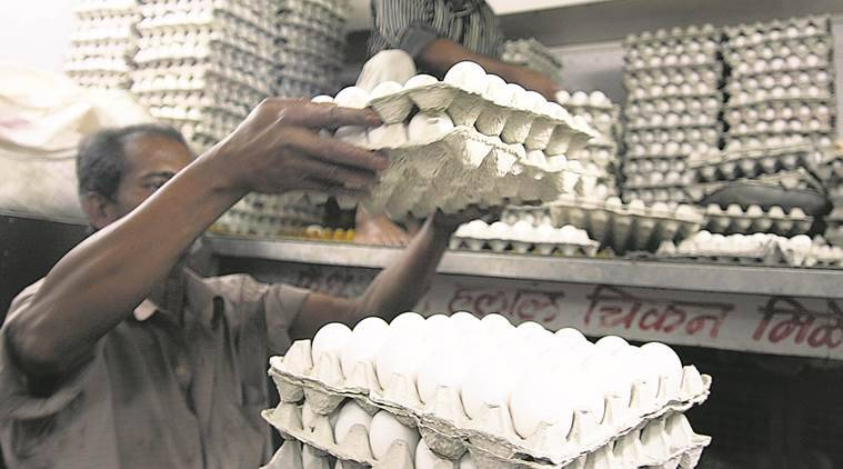 Egg prices, Egg prices in Delhi, Egg as costly as chicken, cap on egg prices, chicken price, chicken price in winters, Egg price in winters, Poultry farmers, NECC
