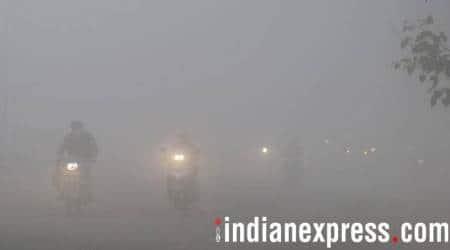 Dense fog, intense cold slow down life in Punjab andHaryana