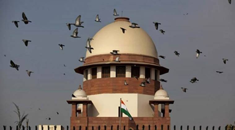 Supreme court hearing, Supreme Court, Constitution, Indian Constitution, Delhi, Article 239 AA, Delhi News, Indian Express, Indian Express News