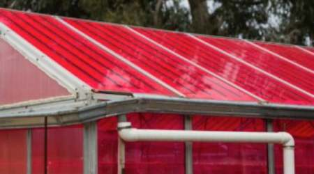 Smart greenhouses generate electricity without affecting cropgrowth
