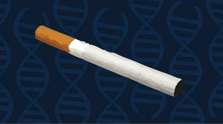 Cigarette addiction essay