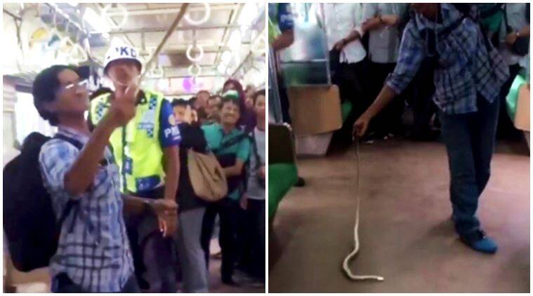 Man grabs, kills snake on Jakarta train