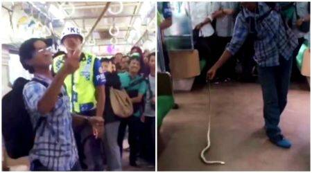 VIDEO: Snake slithers onto a busy train; fearless man kills it with bare hands