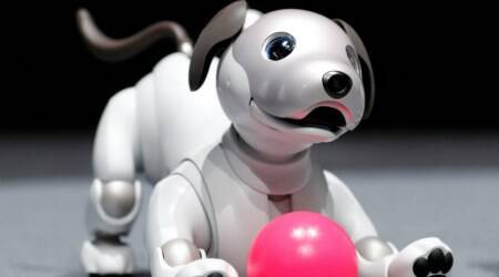 Sony brings back AIBO robot dog after 10 years as AI project