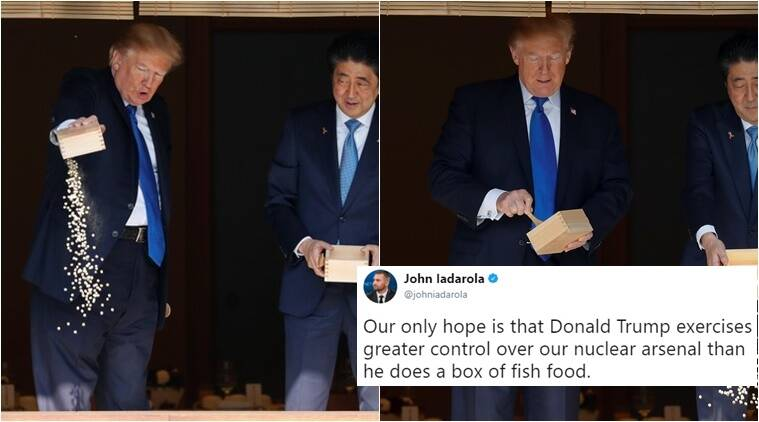 Twitterati angry as trump dumps fish food into pond for Trump feeding fish