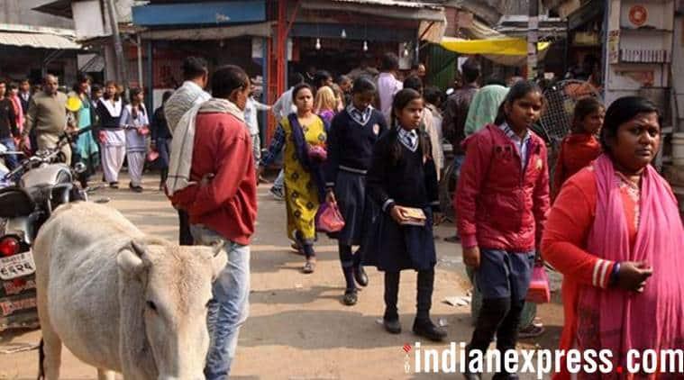 Ayodhya, babri demolition, ayodhya local election, ram temple, UP election, yogi Adityanath, babri masjid, India News, Uttar Pradesh, Indian Express