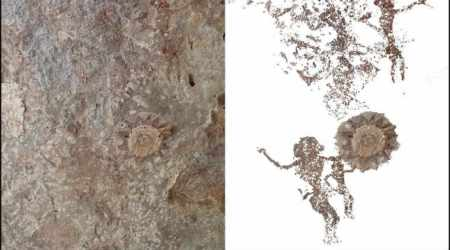 2500-year-old cave paintings discovered on Indonesianisland