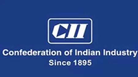 CII said independent directors also contribute to shareholder value creation through strategy evaluation, risk management, governance and control.