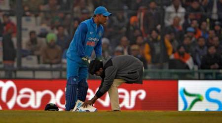 Fan runs out on field during 2nd ODI, touches MS Dhoni's feet, watch video