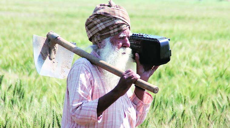 China farmers, India farmers, Indian agriculture sector, minimum support prices, farm distress, farmer suicide, Indian express