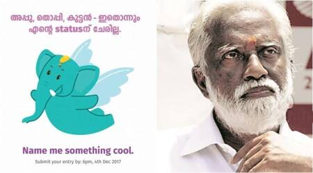 Kochi Metro asked people to give mascot elephant a name; Internet users suggest 'Kummanam'