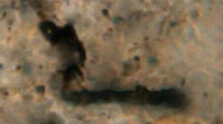 Oldest fossil, early life, University of California Los Angeles, Western Australia rocks, methane gas, primitive photosynthesis, carbon dating, ion mass spectroscopy, oxygen, primitive life forms