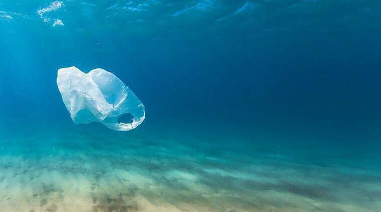 Earth Day 2018 LIVE Updates: Emphasis on the need to end plastic pollution