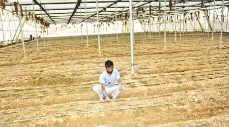 Maharashtra government pushes 'double income' policy for farmlabourers