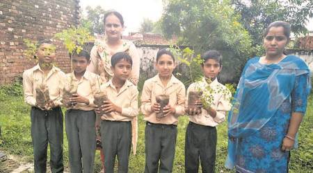 In Talwara govt schools, mission Moringa to help fight malnutrition