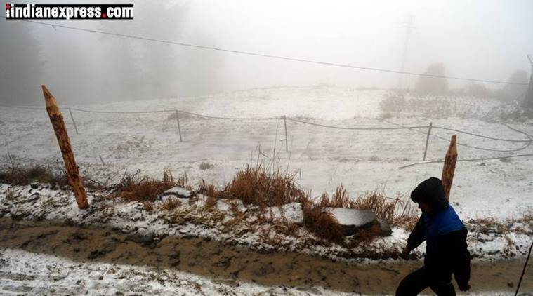 Snowfall, Himachal Padesh, Shimla snowfall, cold weather, Himachal weather consitions, snow, Indian express news