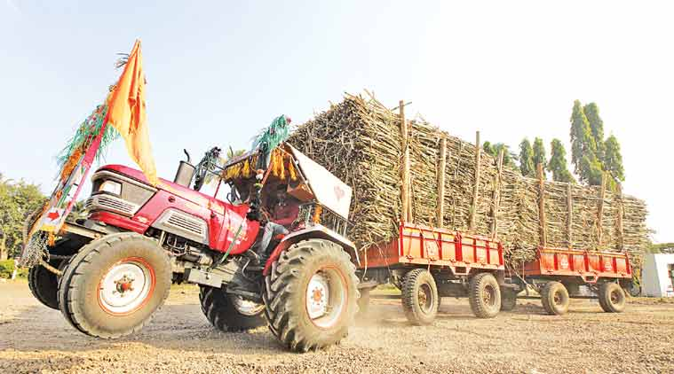 sugar factories, EPF, solapur, osmanabad, sugarcane labourers, sugar factories, labour laws, indian express, maharashtra