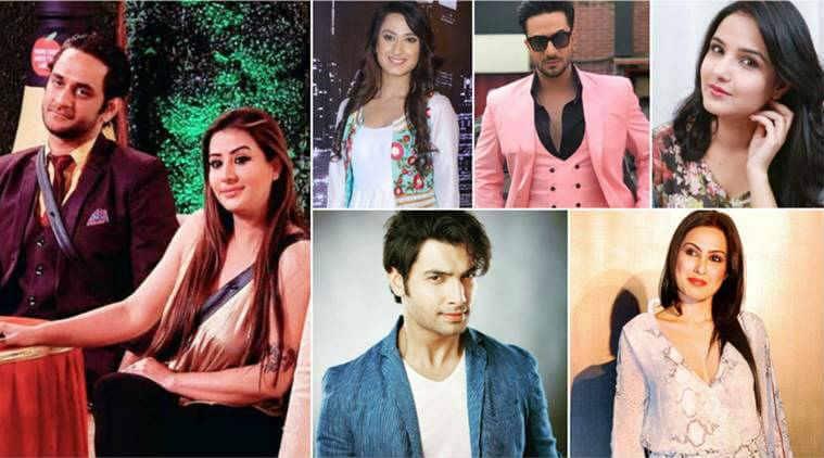 Bigg Boss 11 finalists TV stars