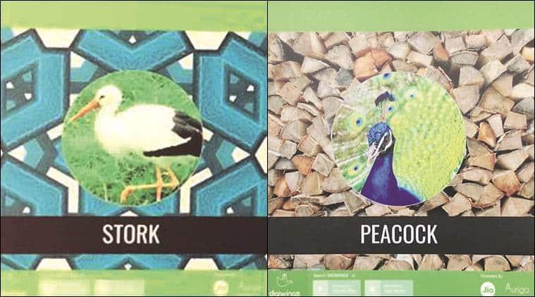 Sukhna Lake,Nature Interpretation Centre, bird lovers, Sukhna lake birds, migratory birds, chandigarh news