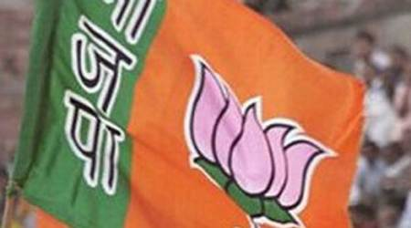 BJP takes the split easy: If Shiv Sena was serious, it would have pulled ministersout
