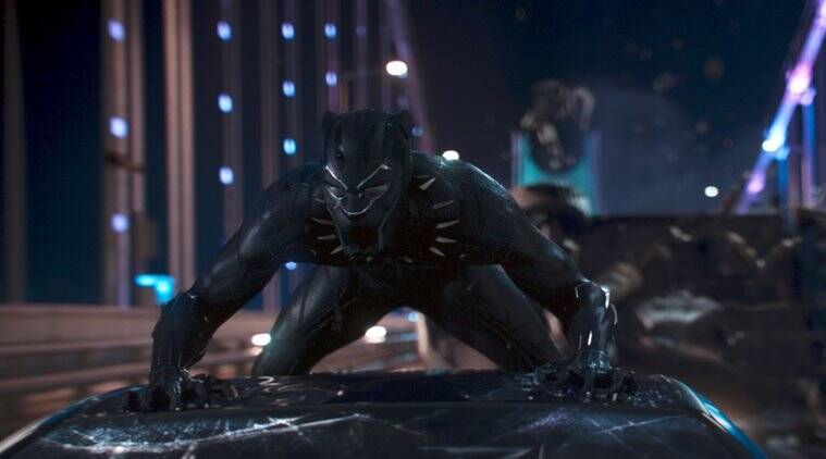 black panther clip, footage, or video