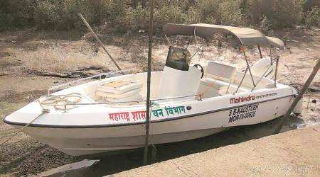 Mangrove Cell's boat rides through flamingo sanctuary to boost employmentopportunities
