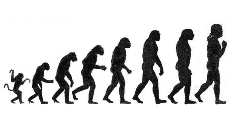 satyapal singh, darwin theory, darwin evolution theory, human creation, charles darwin, creationism, human life, indian express, express explained