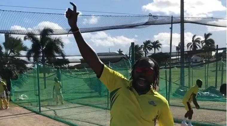 Chris Gayle celebrates after being picked up by the Kings XI Punjab