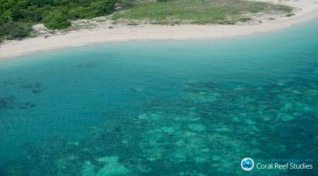 World's coral reefs under siege from El Nino cycles, global warming:Study
