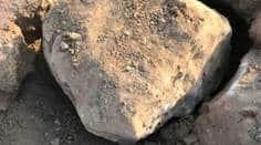 Vadodara: Dinosaur eggs found inMahisagar