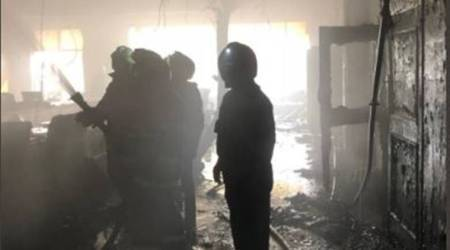 Woodwork factory at Noida gutted in fire