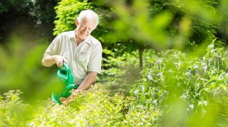 Gardening can make old people stay morehealthy