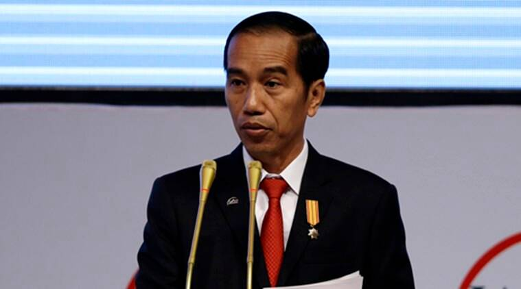 Who did Jokowi handpick to be his 2019 running mate?