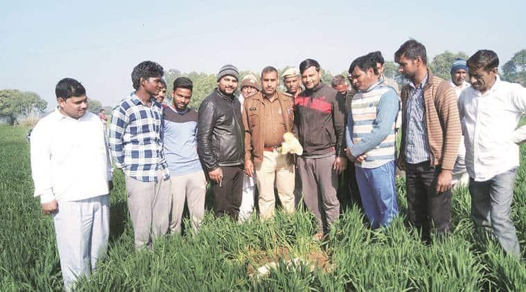 National Green Tribunal, NGT, Gurgaon meteor buzz, Meteor, India Meteorological Department, Haryana Urban Development Authority, NDMA, delhi news