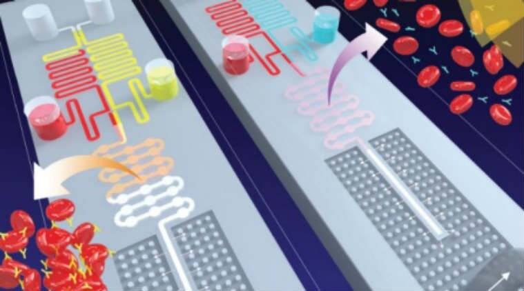 Micro-labs, medical labs, University of Buffalo, lab on a chip, blood group detection, microchips, chemical products, biochemical processes, capillary forces