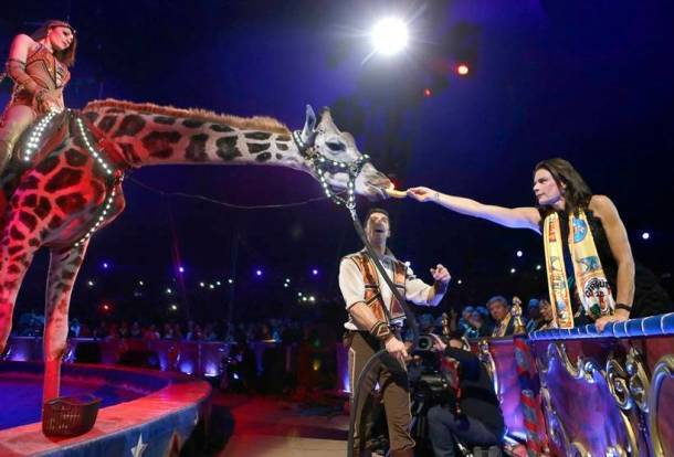 Monte-Carlo International Circus Festival, Monaco circus festival, Monaco circus festival latest photos, Monaco circus festival bizarre stunts, Monaco circus festival animal stunts, circus photos, indian express, indian express news
