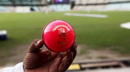 Day-night Test, Day-night Test news, Day-night Test updates, Pink ball Test, Amitabh Chaudhary, sports news, cricket, Indian Express