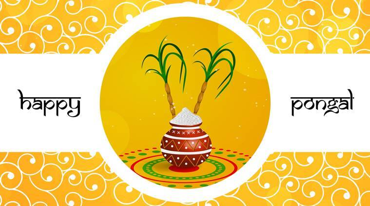 Happy Pongal 2018 Wishes Images Greetings Cards Quotes Messages