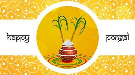 Happy Pongal 2018: Wishes, Images, Greetings, Cards, Quotes Messages, Photos, SMS, WhatsApp and Facebook Status