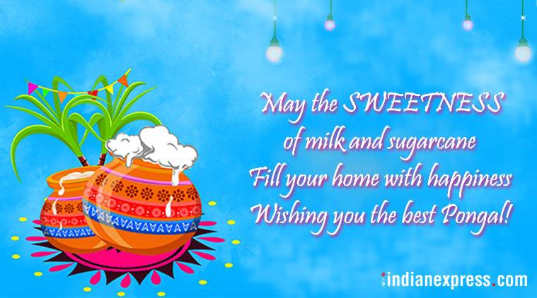 Happy pongal 2018 wishes images greetings cards quotes messages pongal 2018 pongal 2018 wishes pongal wishes pongal whatsapp messages pongal images m4hsunfo