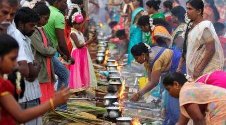 pongal 2018, pongal 2018 date, pongal festival india, pongal in tamil nadu, pongal date in 2018, pongal holidays 2018, pongal harvest festival, pongal festival date and time, know more about pongal festival, why we celebrate pongal, Indian express, Indian express news