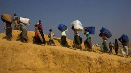 Senators for safe, dignified, voluntary return of Rohingyas