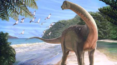 School bus-sized dinosaur fossil found in Sahara Desert