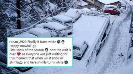 Shimla's snowy landscape is a sight to behold, and people excitedly share photos online