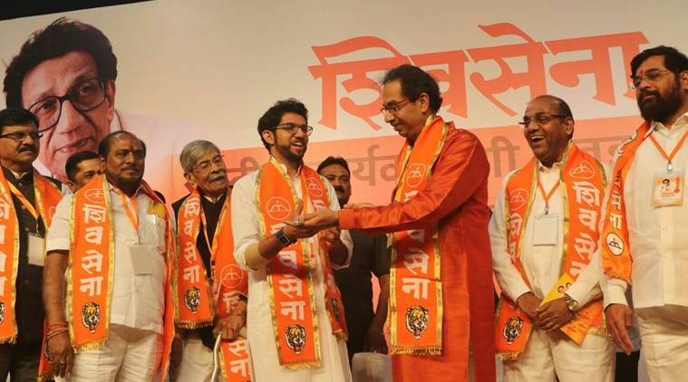Shiv Sena makes break with BJP official, says it will