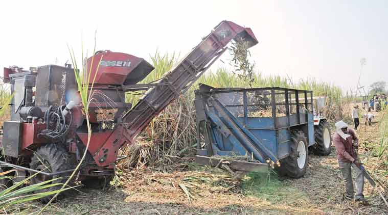 Already under financial stress, Maharashtra mills forced to sell superior-quality sugar at lower prices